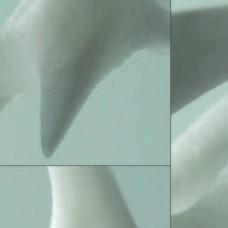 Ламинат Bone Stuctue