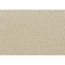 Линолеум коммерческий LG Durable DU99902-01