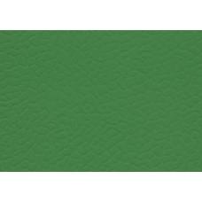 Линолеум спортивный LG Leisure 6606-01