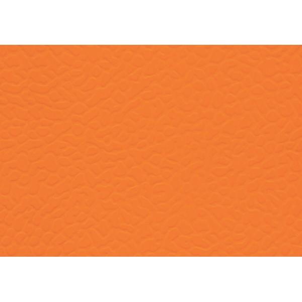 Ліноліум спортивний LG Leisure 6901-01
