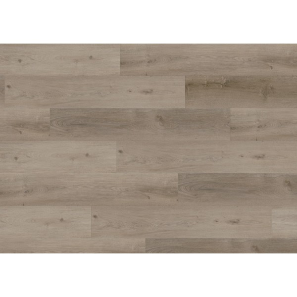Виниловая плитка Wineo 400 DB Wood Grace Oak Smooth